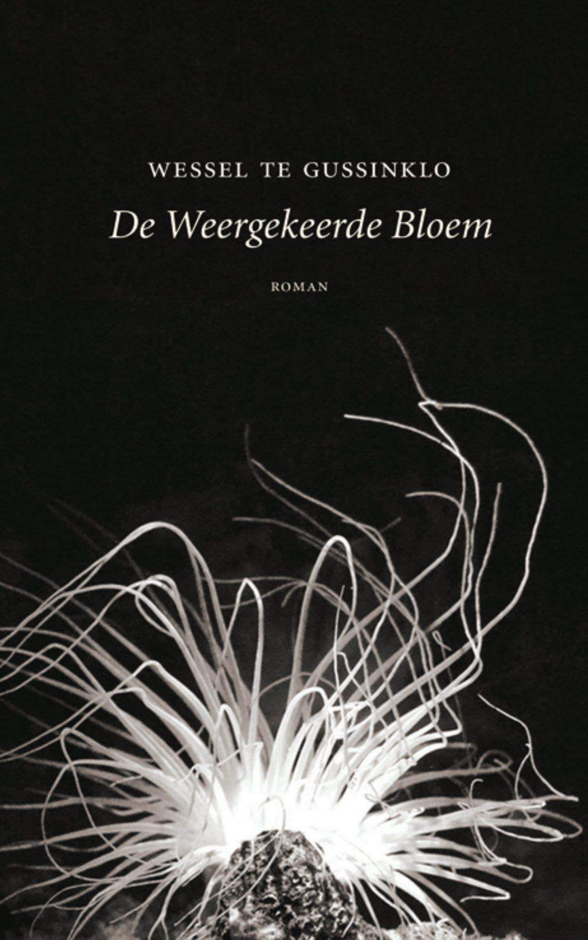 De weergekeerde bloem – Wessel te Gussinklo